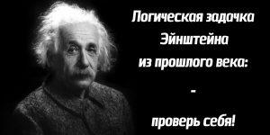 Задача от Эйнштейна: чистая логика - проверь себя!